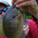 Marty's Panfish