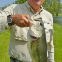 Bluegill Bass
