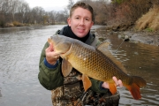 COTD - Fox River Carp in November